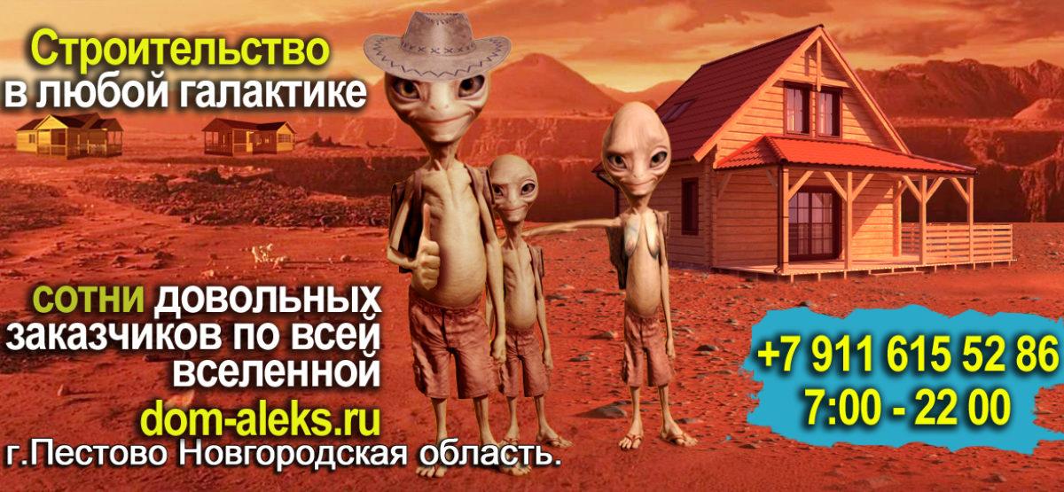 voronezh.dom-aleks.ru